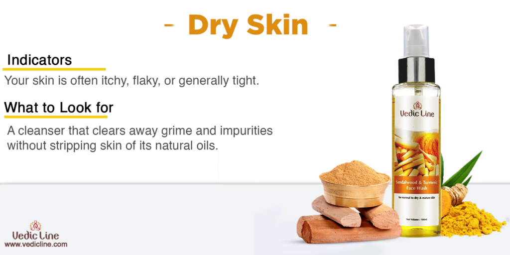 Best cleanser for dry skin-Vedicline