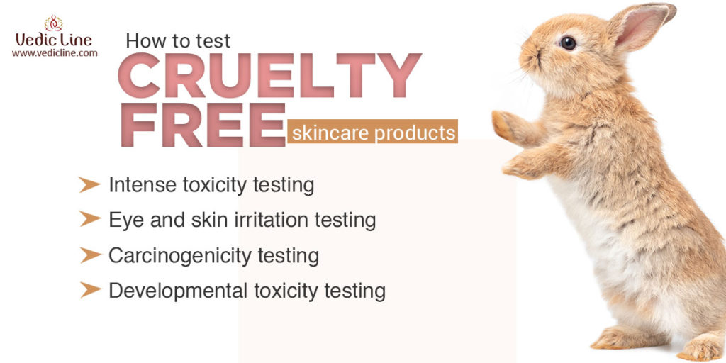 How to test Cruelty-free products-vedicline